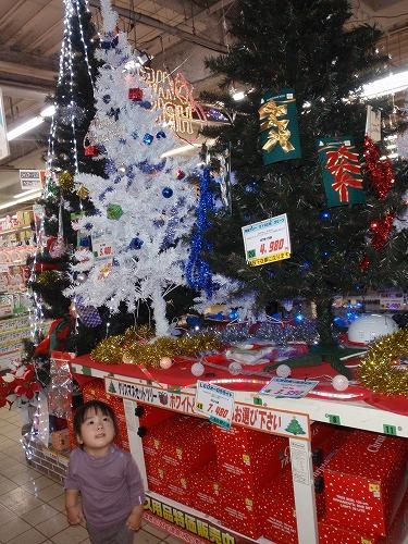 クリスマスの準備_c0180460_1423834.jpg