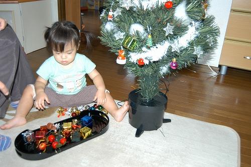クリスマスの準備_c0180460_1453758.jpg
