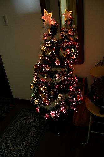 クリスマスの準備_c0180460_1455952.jpg