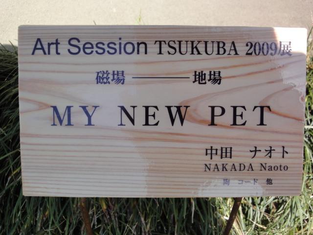 Art Session TSUKUBA 2009展 その5_b0124462_1349775.jpg