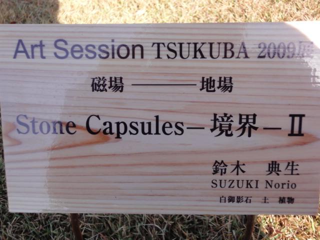 Art Session TSUKUBA 2009展 その5_b0124462_13513887.jpg