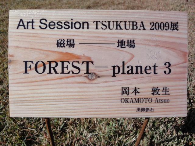 Art Session TSUKUBA 2009展 その5_b0124462_13532063.jpg
