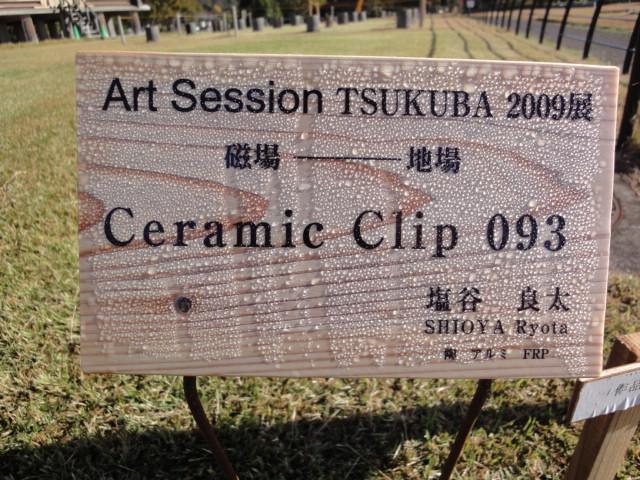 Art Session TSUKUBA 2009展 その5_b0124462_1464849.jpg