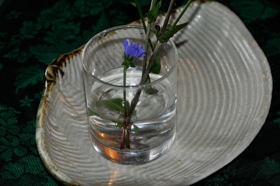 レモン、ゆず、イタリアンパセリ、バジル、ローリエ・月桂樹、ローズマリー、そしてチコリの花、ハヤト瓜 _a0031363_19292136.jpg