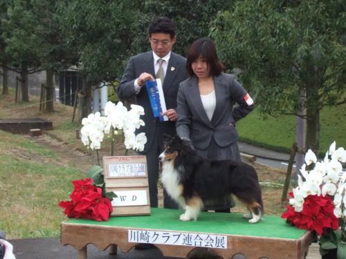 JKC川崎連合_f0126965_857822.jpg