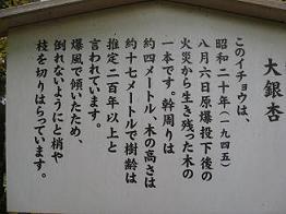 f0146466_2220224.jpg