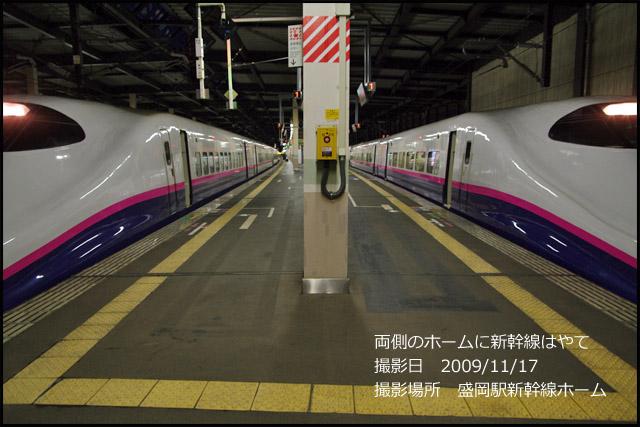 b0019313_1761360.jpg