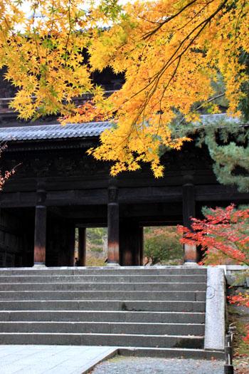 南禅寺 紅葉1_e0048413_2162461.jpg