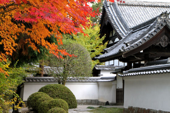 南禅寺 紅葉3_e0048413_2265632.jpg