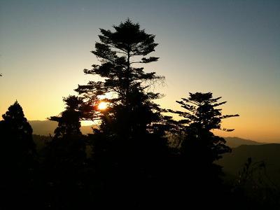 和歌山 高野山_f0191715_9461556.jpg