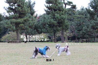 f0197317_1022797.jpg