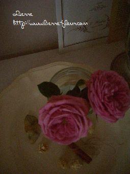 rose ~マリー・アントワネット~_e0127625_18251348.jpg