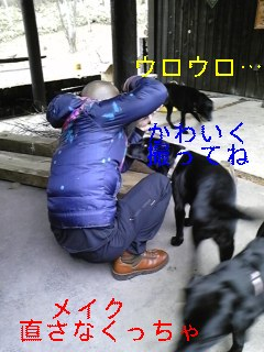 f0148927_85143.jpg