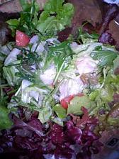 今夜は自家製野菜サラダと・・・パスタを_c0036138_23351592.jpg