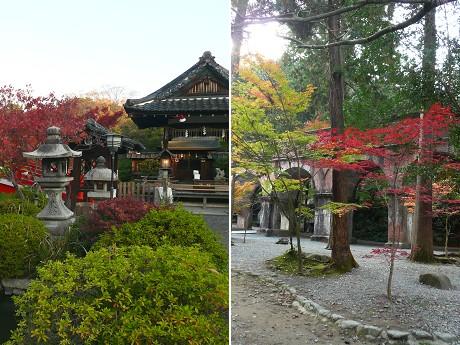 神泉苑と南禅寺の紅葉_c0057946_17384784.jpg