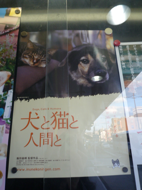 考えさせられた映画・犬と猫と人間と。_f0181251_202113100.jpg