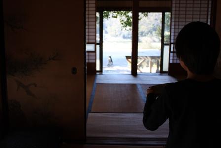 ネコ釣りには焼き鳥屋戦法で。_b0128954_16154935.jpg