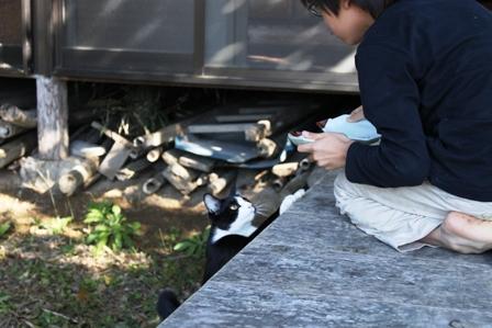 ネコ釣りには焼き鳥屋戦法で。_b0128954_16164531.jpg