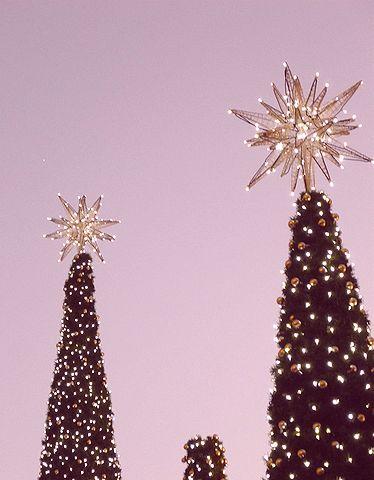 Snowflakes~ la  vent et  le lumiere  ~光と風の冬の日に。。。* *。:☆.。† _a0053662_2172469.jpg