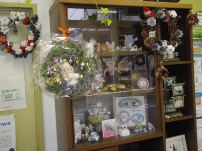 カリファミリー5マルちゃん〜クリスマス撮影第一弾!_b0001465_1822469.jpg