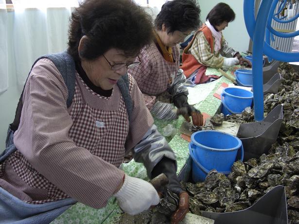 今年もまた牡蠣シーズン到来!_e0175370_16202880.jpg