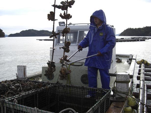 今年もまた牡蠣シーズン到来!_e0175370_166636.jpg