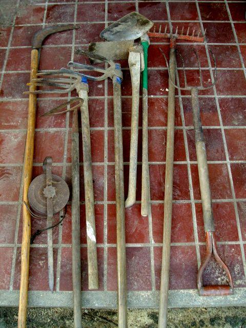 ブルーベリーの根鉢を崩す用具など_f0018078_1725127.jpg