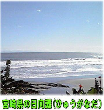 d0070316_1992934.jpg