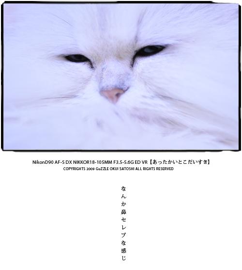 d0112735_383796.jpg