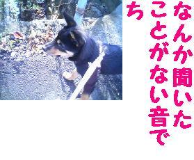 c0211642_17273798.jpg