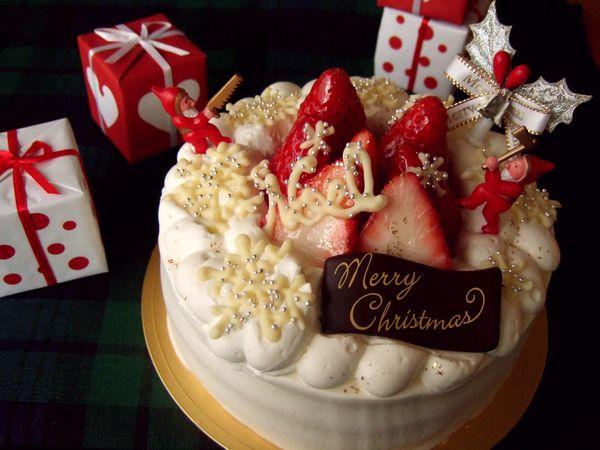 試作・クリスマスケーキ その1_e0160246_16154849.jpg