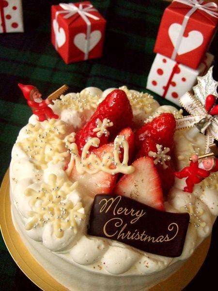試作・クリスマスケーキ その1_e0160246_1693432.jpg