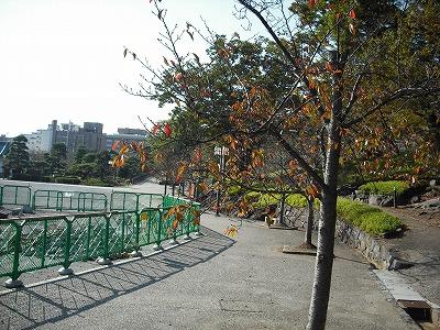 〓甲府城跡お散歩コース〓_b0151362_13161720.jpg