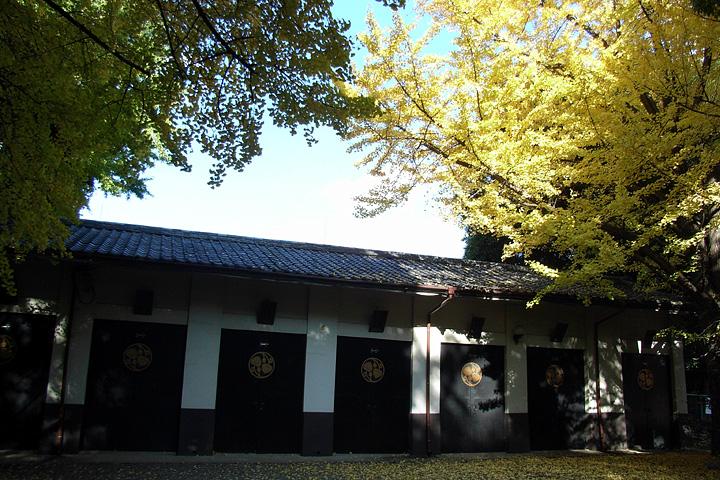 「続きで3枚」の快感(^^; (日枝神社:11/26)_b0006870_193974.jpg