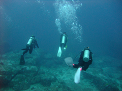 11月19~23日 Similan&Surin Cruise_d0086871_1403444.jpg