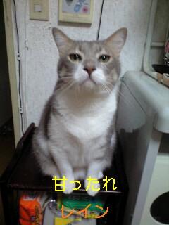 b0112380_6245630.jpg