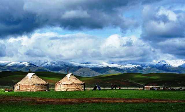 ■モンゴルの草原_e0094583_16244063.jpg