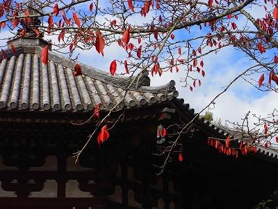 奈良の秋_c0207890_2358959.jpg