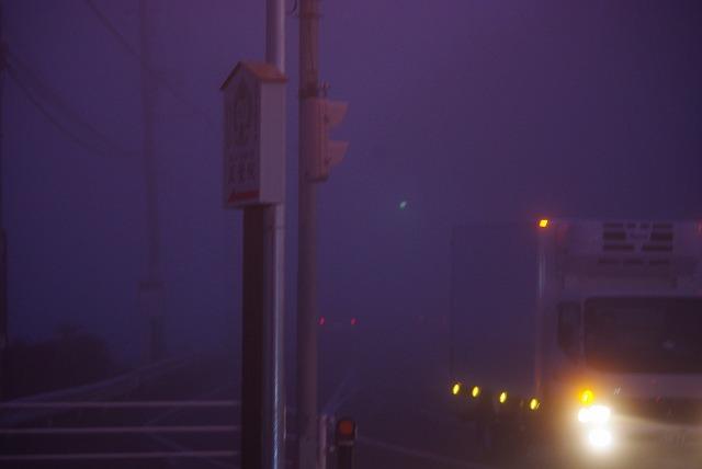 霧の朝_d0147812_12254599.jpg