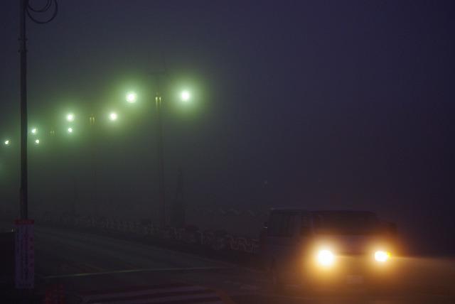 霧の朝_d0147812_12273375.jpg