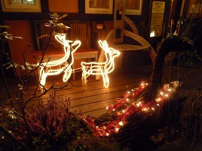 クリスマスツリー 【時々M's MEMO】_f0111415_231629.jpg