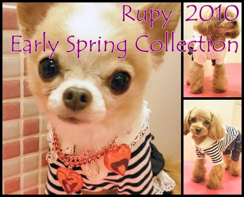 RUPY2010Earlly Collection受注会_b0084929_2019429.jpg