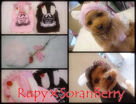 RUPY2010Earlly Collection受注会_b0084929_20274119.jpg