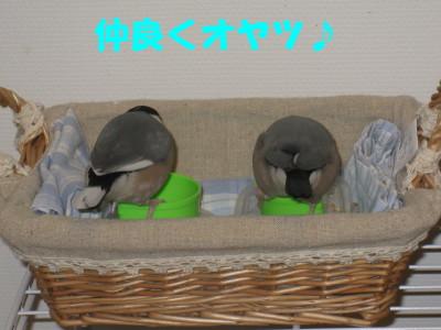 b0158061_22502263.jpg
