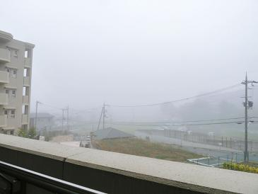 濃霧・・ムム・・・・・_f0134268_23372690.jpg
