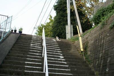 気配り階段_c0193077_21133677.jpg
