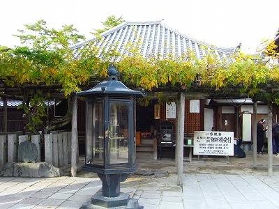 奈良の秋_c0207890_05526.jpg