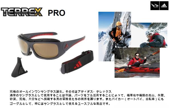 adidas TERREX_c0003493_10381714.jpg