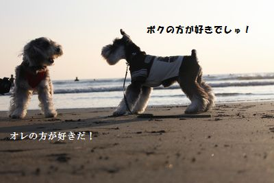 f0197317_9171042.jpg