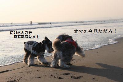 f0197317_9203019.jpg